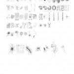 01-AUG-2010 >copy&paste